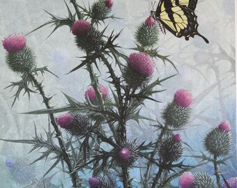 Fine Art Print-Thistle and Swallowtail from an original by Mike Stinnett