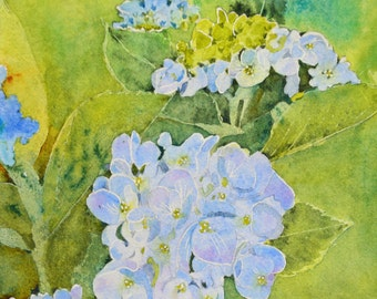 Fine art painting watercolor painting original blue hydrangeas flowers floral watercolor original watercolor painting flowers painting blue