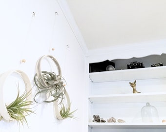 Large Airplant Ring Cradle Sling Hanging Planter Display for Air Plant MADE TO ORDER