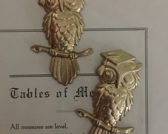 Wise Owl with Graduation Cap (1 pc)