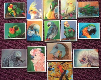 """Blank greeting cards with original artwork. 4x6"""" and 5x7"""". Choose from 15 designs!"""