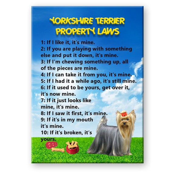 Yorkshire Terrier Property Laws Fridge Magnet