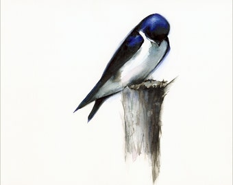 Content - Bird Art