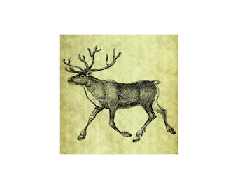 CARIBOU REINDEER Rubber Stamp~Large Unmounted Cling Stamp~Vintage Christmas Illustration~DIY Card Making~Arctic Tundra Wildlife (56-01)