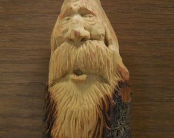 """A Wood Spirit named """"Cass"""""""