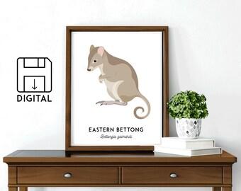 Bettong print, printable animal art, Australian native, Australian art, nursery art, nursery decor