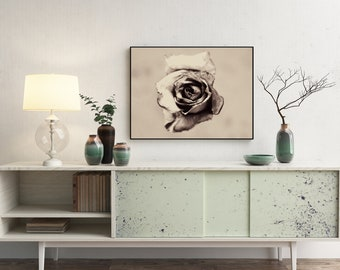 Monochrome Antique Rose Fine Art Print - Fine Art Print or Canvas, Limited Edition