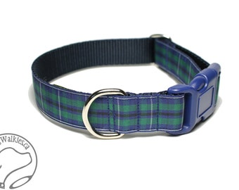 """Modern Douglas Clan Tartan Dog Collar - 1"""" (25mm) Wide - Green and Navy Plaid - Matingale or Side Release Buckle - Choice of size & style"""