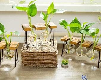 Simple Hygge Glass Vase Wood Set, Water Plant, Glass Vase, Home Decor, Office Decor, Gift Idea, Vase, Air Plant, Terrarium, Glass Planter