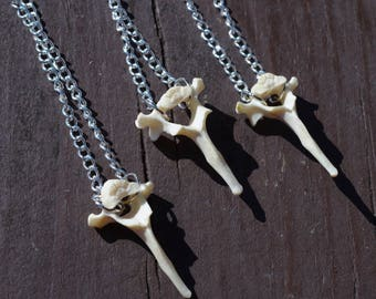 Feline Vertebra Necklace