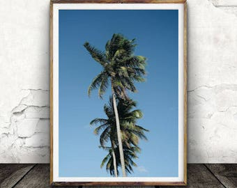 Palm Print, Palm Tree Print,  Summer Print, Tropical Print, Botanical Print,Digital Wall Art, Art Print, Nature Art, Photography, Relax