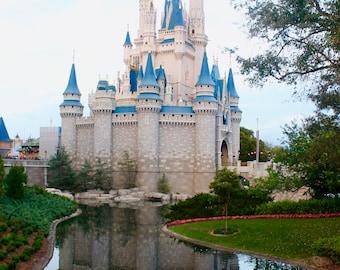 Disney Castle/ Castle/ Castle moat/Castle JPG/ Wall art/ gifts for her/ Happy/ Memories/vacation/ Disney
