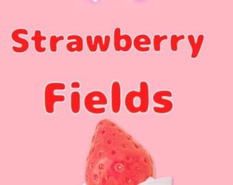 Strawberry Fields grab bag