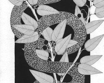 snake prints