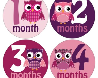 12 Monthly Baby Milestone Waterproof Glossy Stickers - Just Born - Newborn - Weekly stickers available - Design M034-01