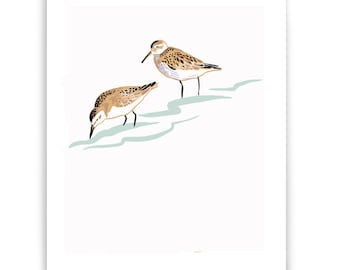 "ART106: Sandpipers 8"" x 10"" Art Reproduction"