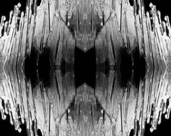 Fragments 01 (5x7) mounted print