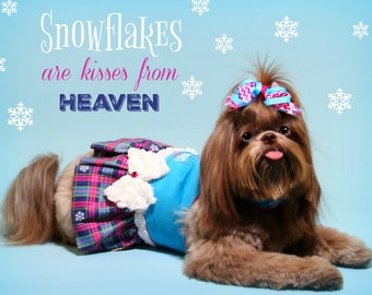 WINTER:  Snowflakes are Kisses from Heaven Dog Harness