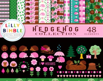 HEDGEHOG COLLECTION of clipart and digital paper, cute, commercial use, clip art, woodland, scrapbook, instant download