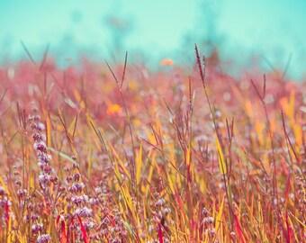 Landscape Photography - Peachy Rural Field color nature print - home decor - aqua turquoise orange wall decor