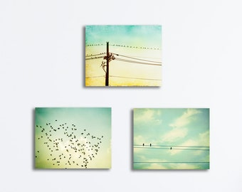 Bird on Wire Canvas Set of Three, 3 mint yellow light teal turquoise nursery baby room decor aqua gallery wrapped pale wall art pictures