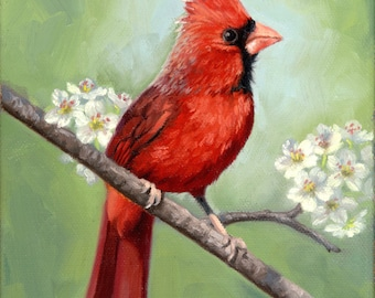 Red Cardinal - bird painting - Open edition print - bird print