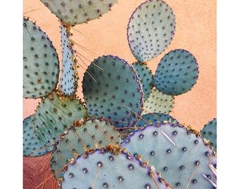 Prickly Pear on Orange Wall  // Cactus Art // Cactus Desert Photography // Southwest Home Decor // Plant Photograph // Cacti Art