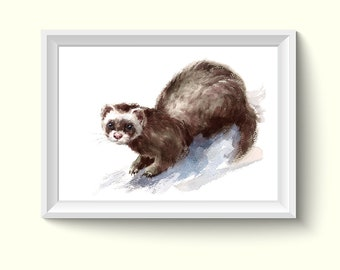 Ferret Animal Watercolor Painting Poster Art Print A573