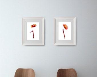 Set 2 flowers- Flower painting, flowers print, Floral Illustration, flower art, tulip art, botanical art, glicee print, set garter weeding