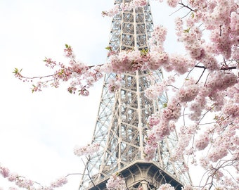 Paris Photography, April in Paris, Pretty in Pink, Paris in the Springtime, Pink Cherry Blossoms Eiffel Tower, Paris Home Decor