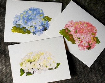 Hydrangea  Flower Note Cards - greetings, thank you, invitations.