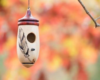 Feather Hummingbird House