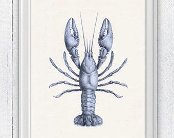 Blue Lobster sea life print- Wall decor poster   Sale buy 4 get 5- Marine  sea life illustration A4 print SAS002