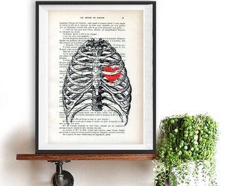 Anatomy Heart Art Print Upcycled Dictionary Page Rib Cage Heart 1900 vintage page Doctor gift Illustration human science Christmas gift him
