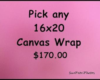 """16x20"""" Canvas wrap photograph, photography, 16x20, canvas wrap image"""