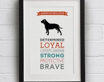 American Bulldog Dog Breed Traits Print - American Bulldog Gift