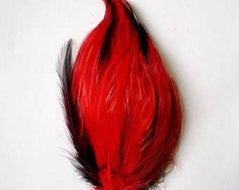 Red on Black Hackle Feather Pad
