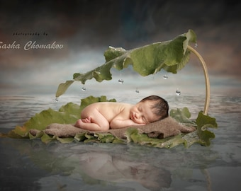 Digital backdrop background  newborn baby boy or girl fairy tails outdoors  water nautical sea
