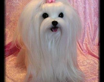 Maltese~ Lifelike Soft Sculpture ~ Memorial ~ Pet Urn ~ Art ~ Dog Collectible