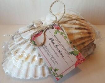 Handmade Sea Shell Bunting