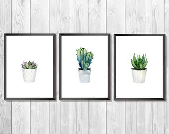 Cactus print set. Set of 3 prints. Cactus Watercolor. Succulent artwork. Cacti Botanical set. Cactus art.  Southwestern Art. Kitchen Wall