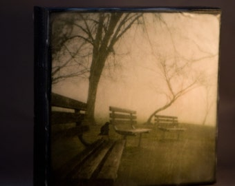 Park Crow Green Encaustic Photograph on Wood Panel--3 Benches 3 Trees 1 Crow--6x6 Fine Art