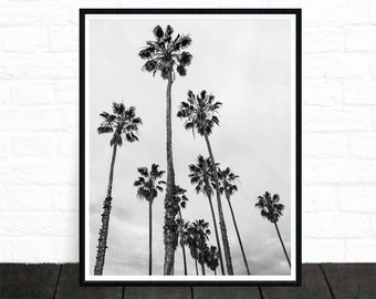 Palm Tree Print, Palm Tree Photo, Black and White Photography, Tropical Wall Art, California Print, Palm Tree Art, Palm Decor, Printable