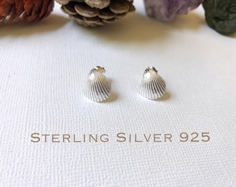 Sterling Silver shell stud earrings, Shell earrings, Beach earrings, Beach jewelry, Silver shell studs, Hawaiian earrings
