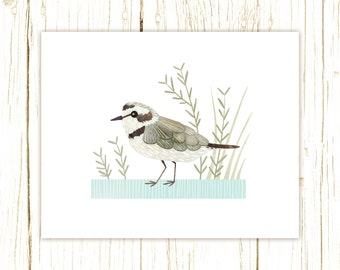 Snowy Plover Print -- bird art --bird art 52 birds stephanie fizer coleman illustration