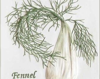 "4 1/4"" x 4 1/4"" Fennel Herb Tile"