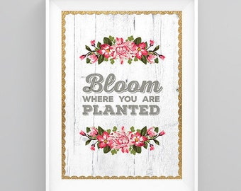 Bloom Where You are Planted // Typography Print // White Barn Wood  // Wall Art