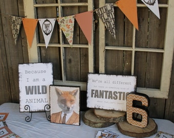 Fantastic Mr. Fox party decorations
