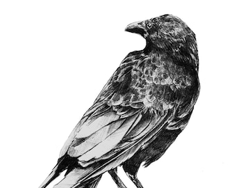 You old Crow greeting card
