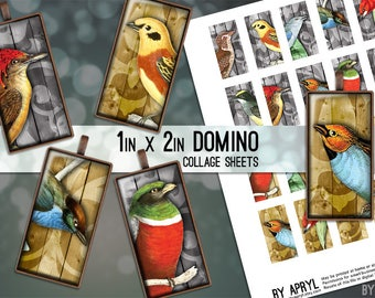 Vintage Birds 1x2 Domino Collage Sheet Digital Images for Glass and Resin Pendants Magnets Paper Craft JPG D0012